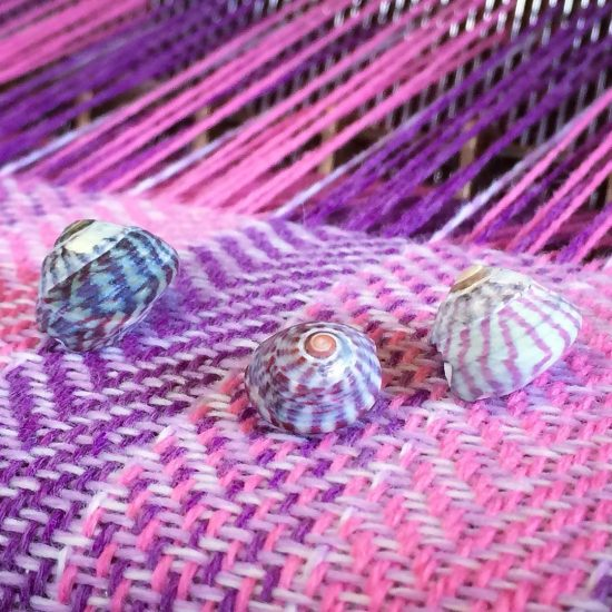 purple topshells which inspired this baby blanket