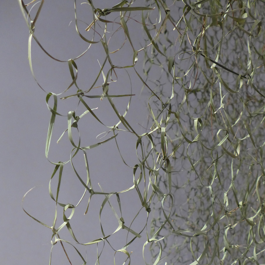 Detail of green veil made from reeds by artist Caroline Dear