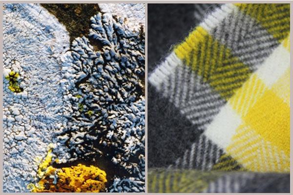 lichen scarf inspiration