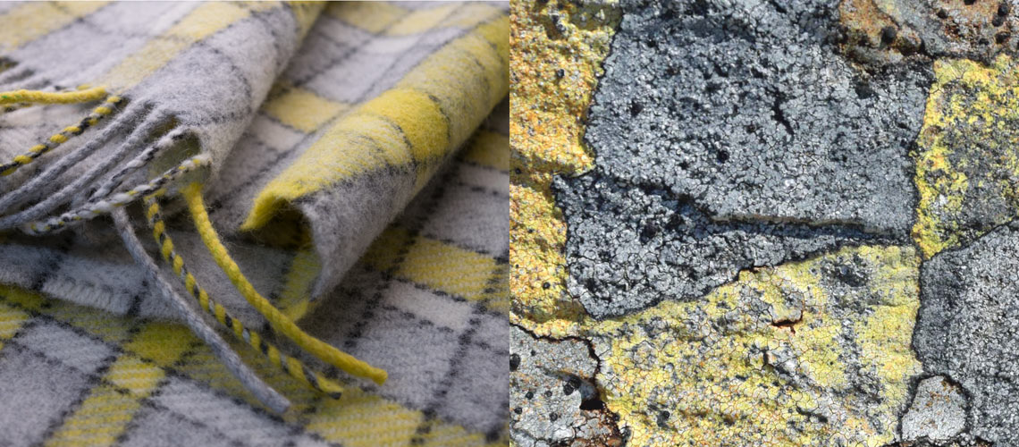 map lichen scarves