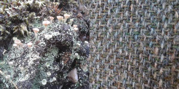 lichen herringbone