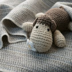 baby blanket dappled seashore