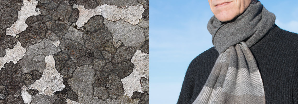 striped-scarf-grey-lichen