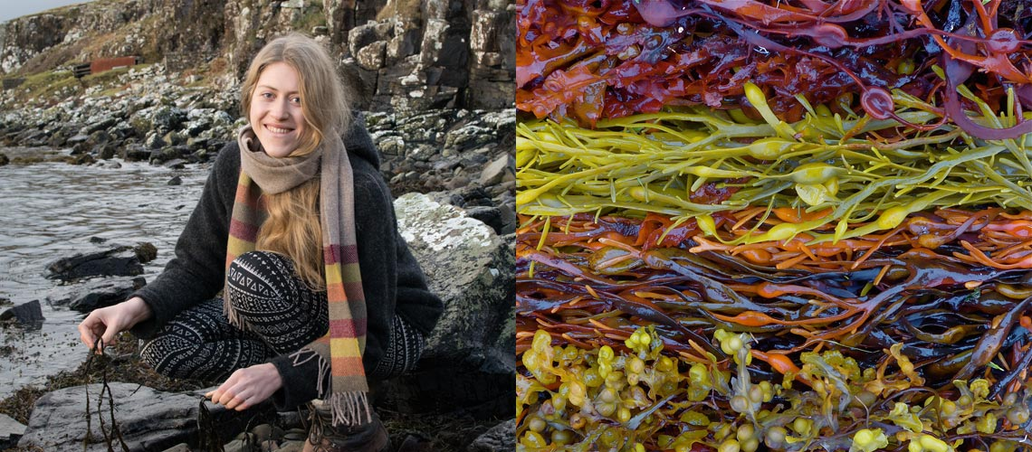 striped scarf seaweed